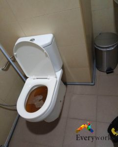Clear-toilet-bowl-choke-everyworks-plumber-singapore-commercial-Jrong-west-1