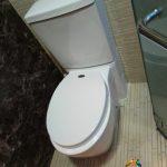 Clear-Toilet-Bowl-Choke-Drainage-Pipe-Choke-Plumber-Singapore-Landed-Sembawang-5_wm
