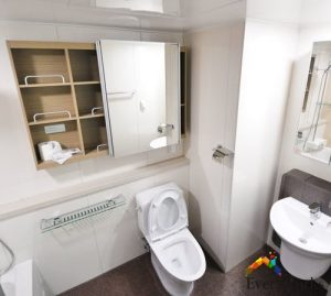 toilet-bowl-issues-plumbng-services-everyworks-singapore_wm