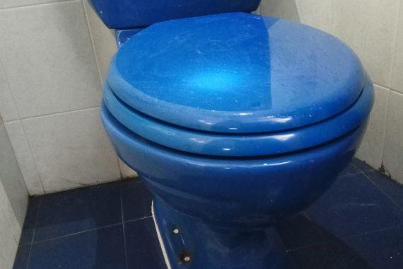 Fix-leaking-toilet-bowl-plumber-singapore-HDB-Ang-mo-kio-21_wm