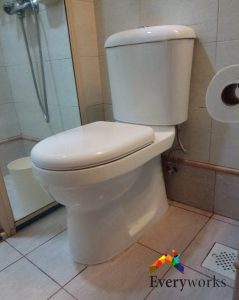 choosing-toilet-bowl-install-replace-everyworks-plumber-singapore