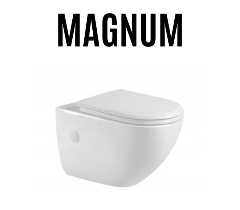 magnum-toilet-bowl-installation-replacement