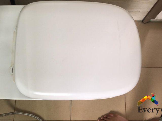 Toilet Seat Hinge Repair Handyman Singapore – Condo Pasir Panjang
