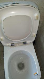 toilet-seat-hinge-repair-singapore-condo-jalan-pasir-ria-2_wm