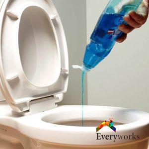 dish-detergent-toilet-bowl-choke-everyworks-plumber-singapore