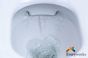 double-cyclone-toilet-flush-everyworks-plumber-singapore