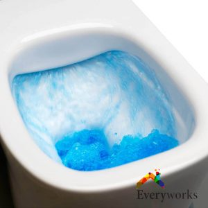 pressure-assisted-flush-system-toilet-flush-installation-everyworks-plumber-singapore