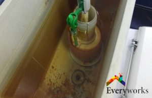 sediments-toilet-tank-toilet-flush-system-replace-everyworks-plumber-singapore