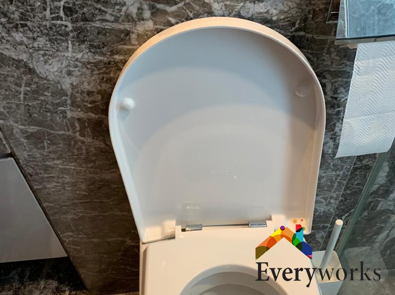 Toilet Seat Replacement Plumbing Services Handyman Singapore – Landed Serangoon