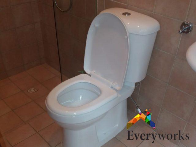 Toilet Bowl Replacement Plumbing Services Handyman Singapore – Landed Bukit Timah
